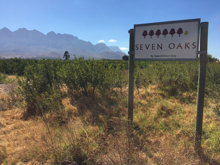 Seven Reasons To Visit Seven Oaks Wines