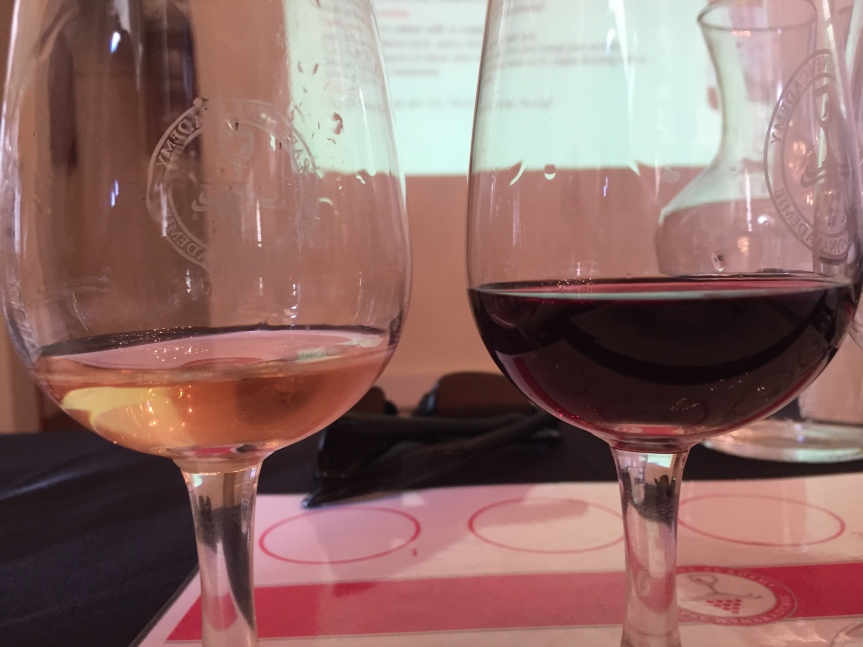 A Cape WineMaster-class